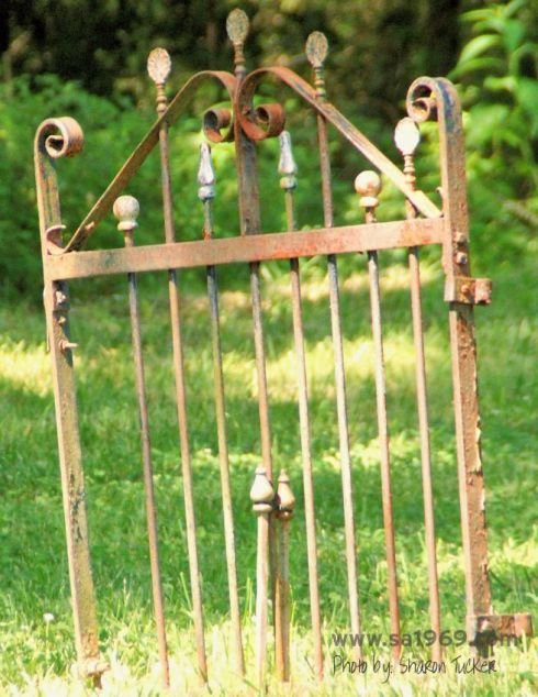 Two 1880's wrought iron gates were used to create an entrance for the wedding guests.