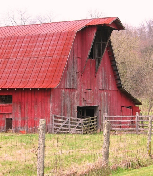 This picture of a beautiful red barn in Tennessee was taken by artist Mellissa Meeks.
